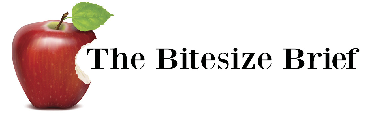 The Bitesize Brief Image